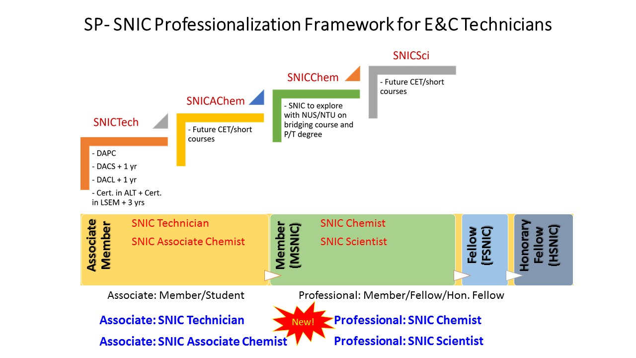SNIC Professionalisation Framework 17 April 2018